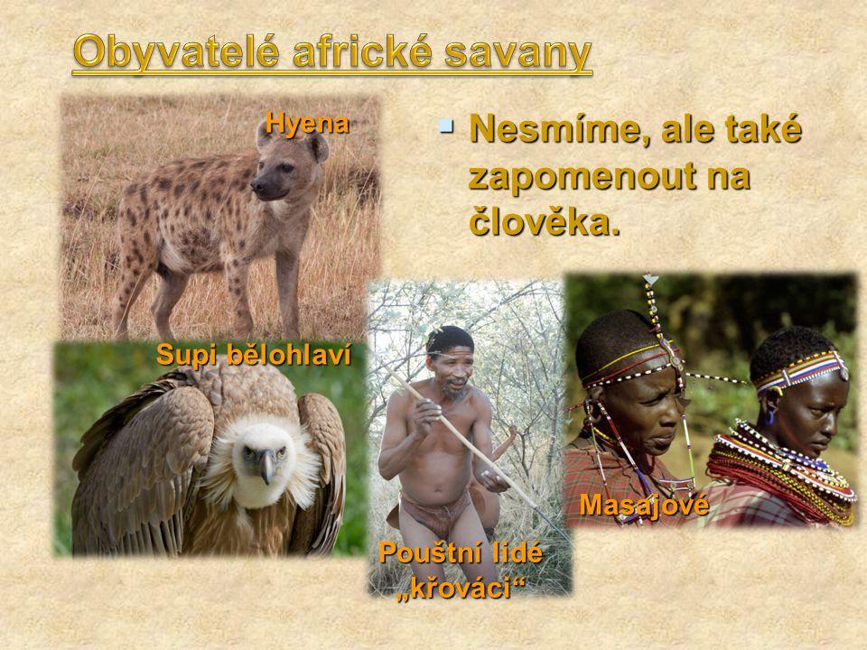 Obyvatelé africké savany