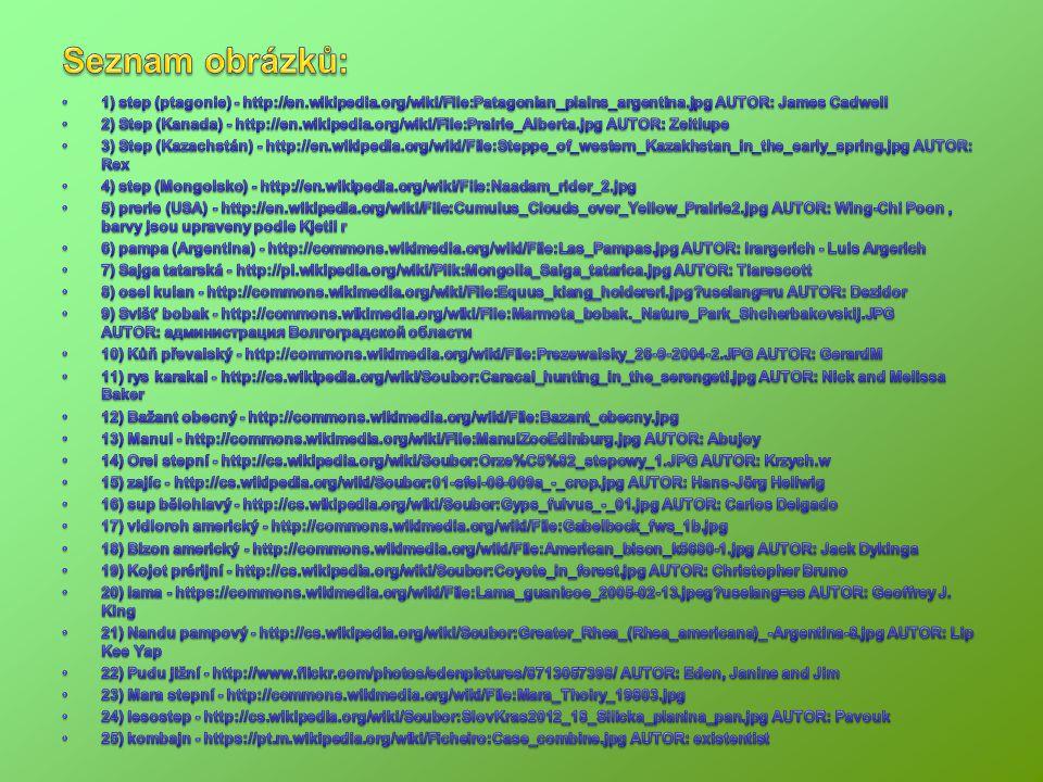 Seznam obrázků: 1) step (ptagonie) - http://en.wikipedia.org/wiki/File:Patagonian_plains_argentina.jpg AUTOR: James Cadwell.
