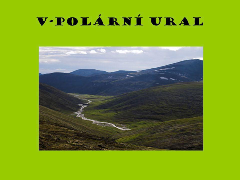 V-polární ural