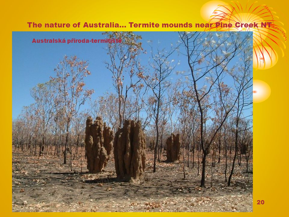 The nature of Australia… Termite mounds near Pine Creek NT