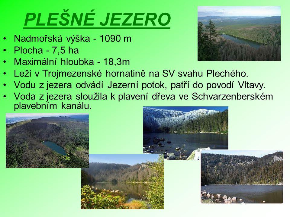 PLEŠNÉ JEZERO Nadmořská výška - 1090 m Plocha - 7,5 ha