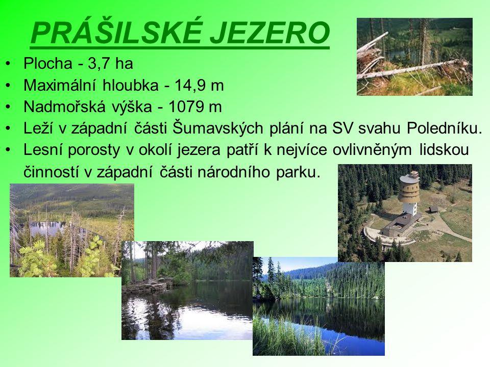 PRÁŠILSKÉ JEZERO Plocha - 3,7 ha Maximální hloubka - 14,9 m