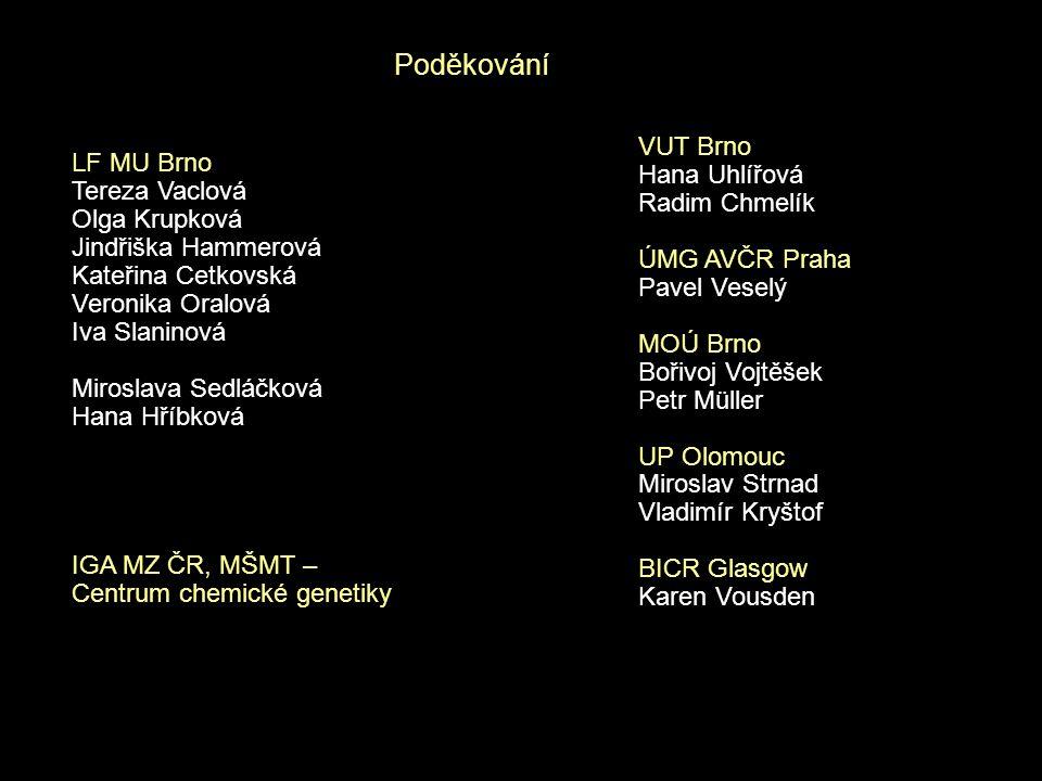 Poděkování VUT Brno LF MU Brno Hana Uhlířová Tereza Vaclová