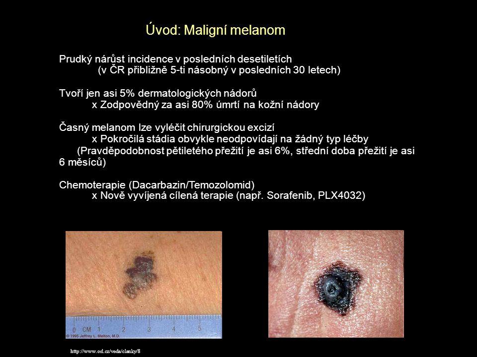 Úvod: Maligní melanom Prudký nárůst incidence v posledních desetiletích. (v ČR přibližně 5-ti násobný v posledních 30 letech)