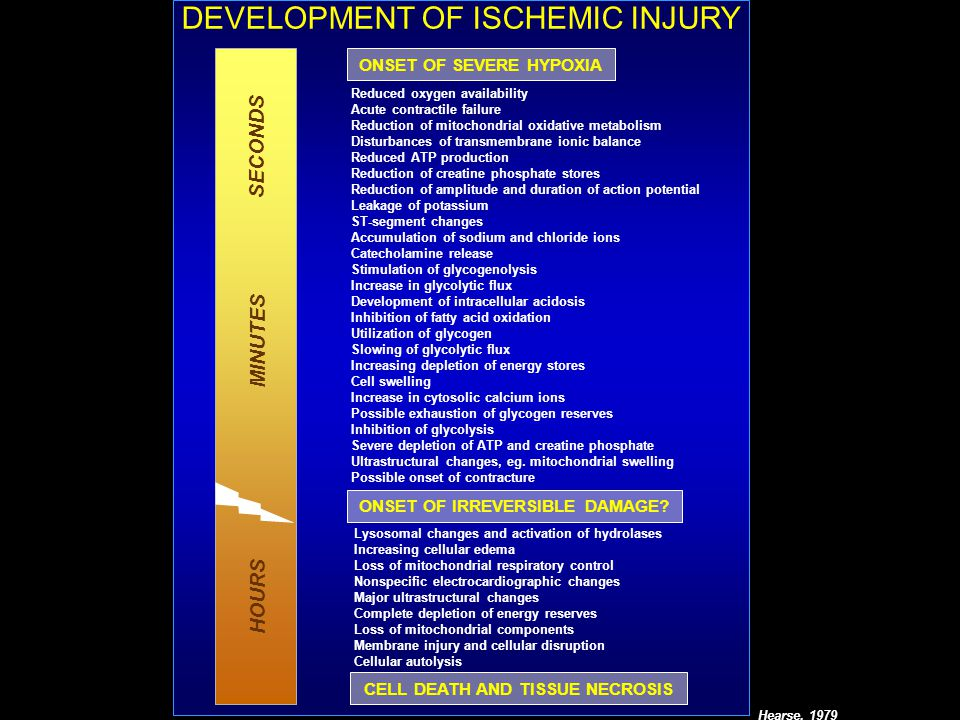 DEVELOPMENT OF ISCHEMIC INJURY