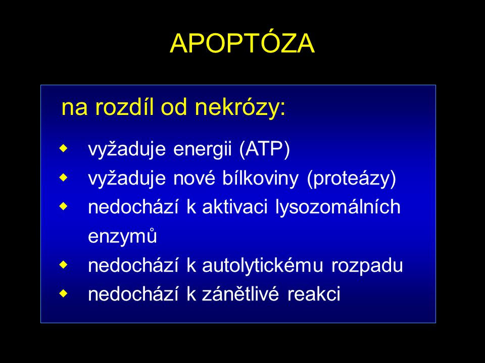 APOPTÓZA na rozdíl od nekrózy: vyžaduje energii (ATP)