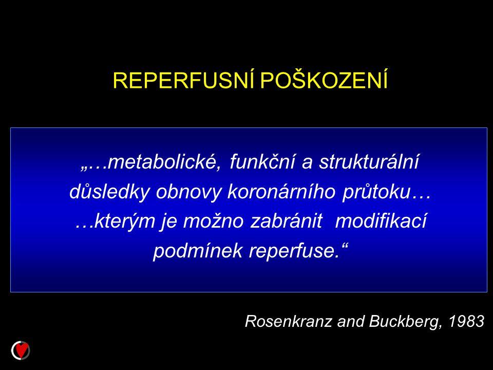 """REPERFUSNÍ POŠKOZENÍ """"…metabolické, funkční a strukturální"""