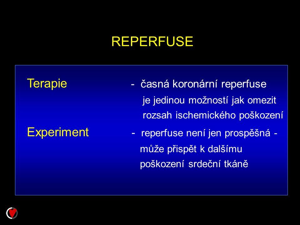 REPERFUSE Terapie - časná koronární reperfuse