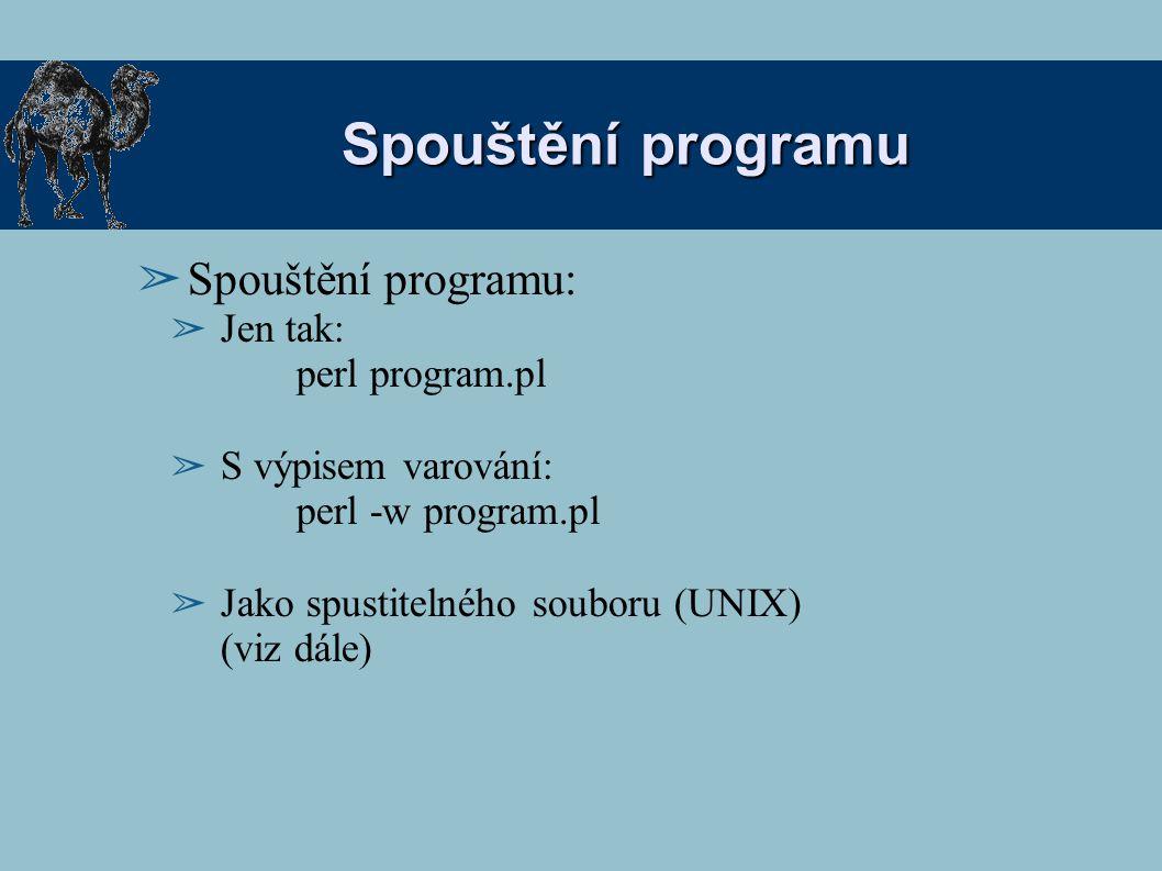 Spouštění programu Spouštění programu: Jen tak: perl program.pl