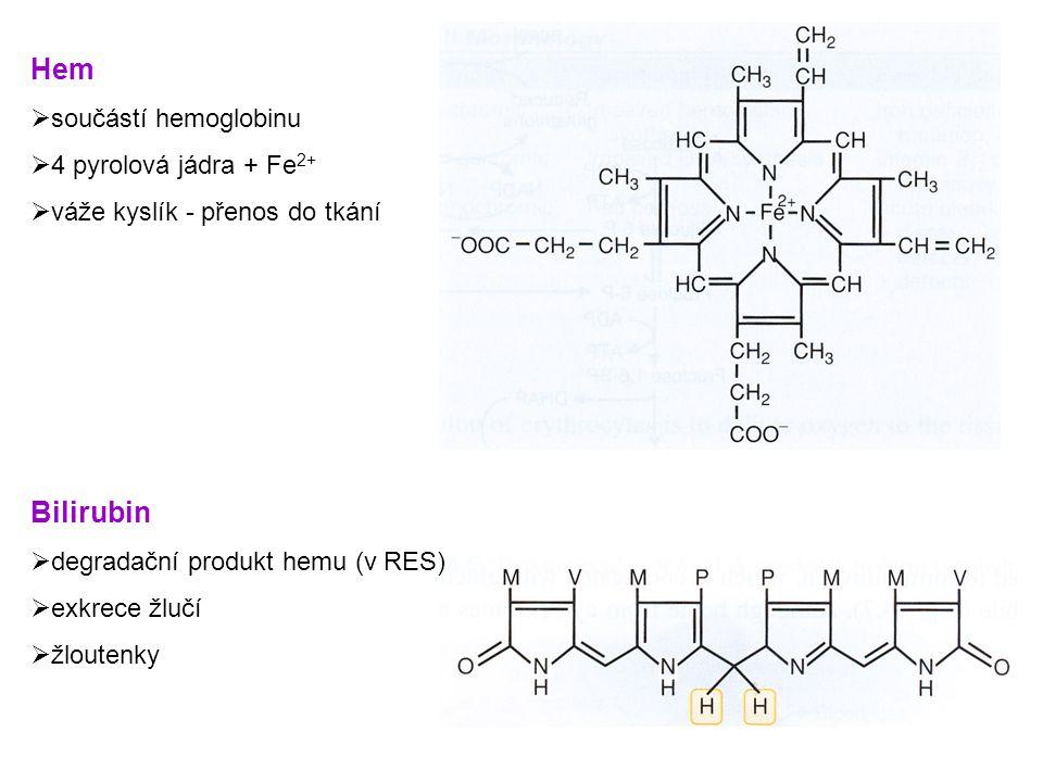 Hem Bilirubin součástí hemoglobinu 4 pyrolová jádra + Fe2+