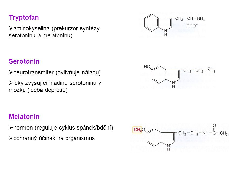 Tryptofan Serotonin Melatonin