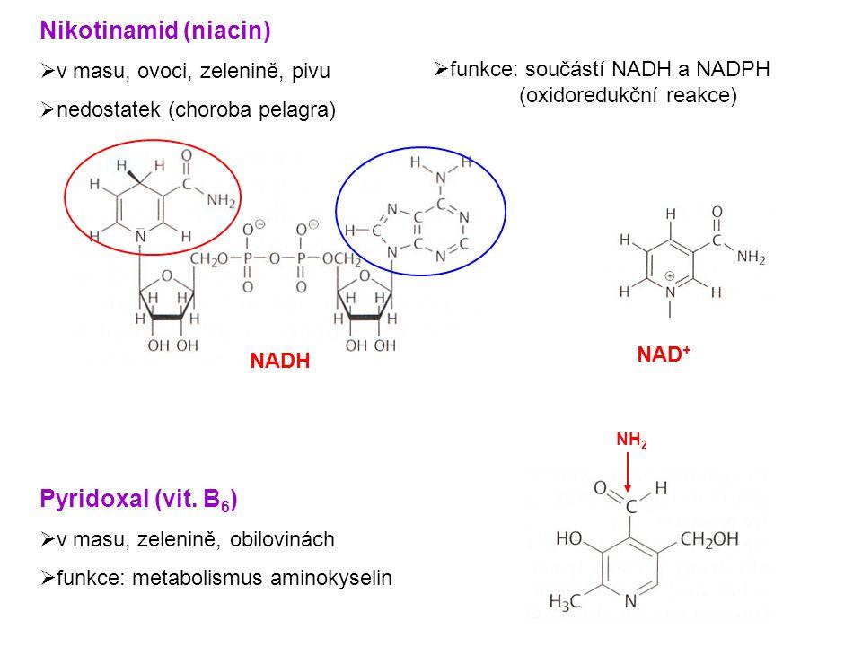 Nikotinamid (niacin) Pyridoxal (vit. B6) v masu, ovoci, zelenině, pivu