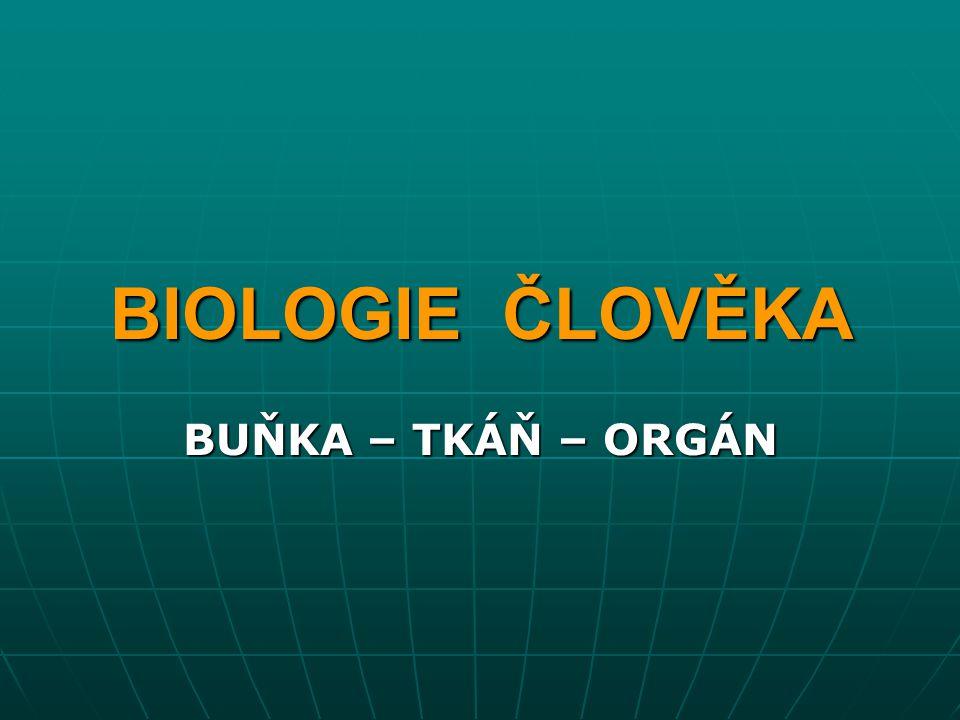 BIOLOGIE ČLOVĚKA BUŇKA – TKÁŇ – ORGÁN