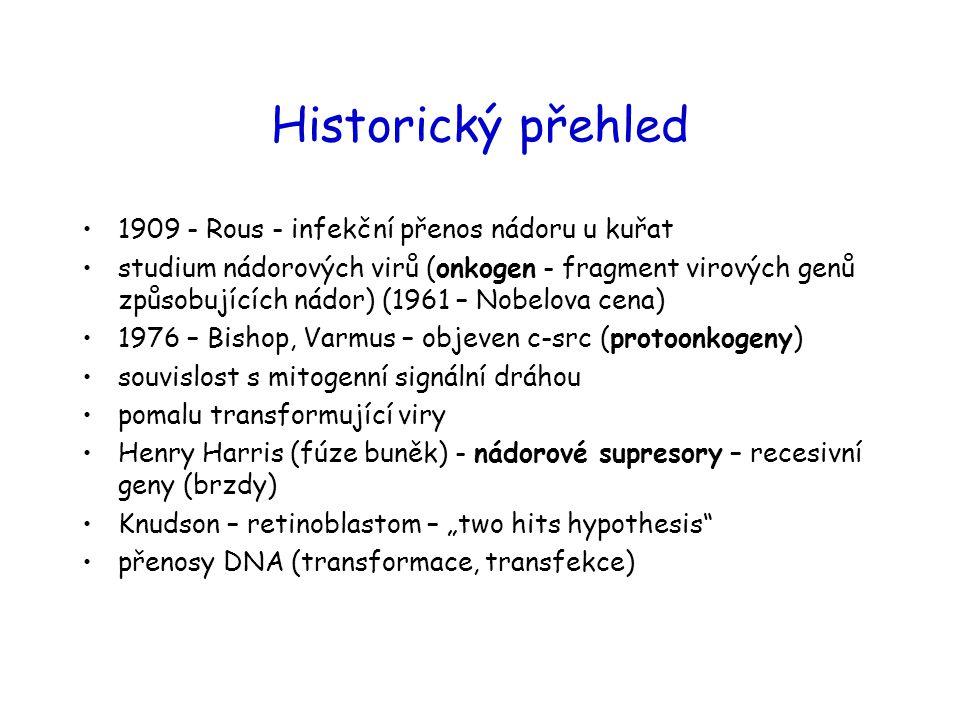 Historický přehled 1909 - Rous - infekční přenos nádoru u kuřat