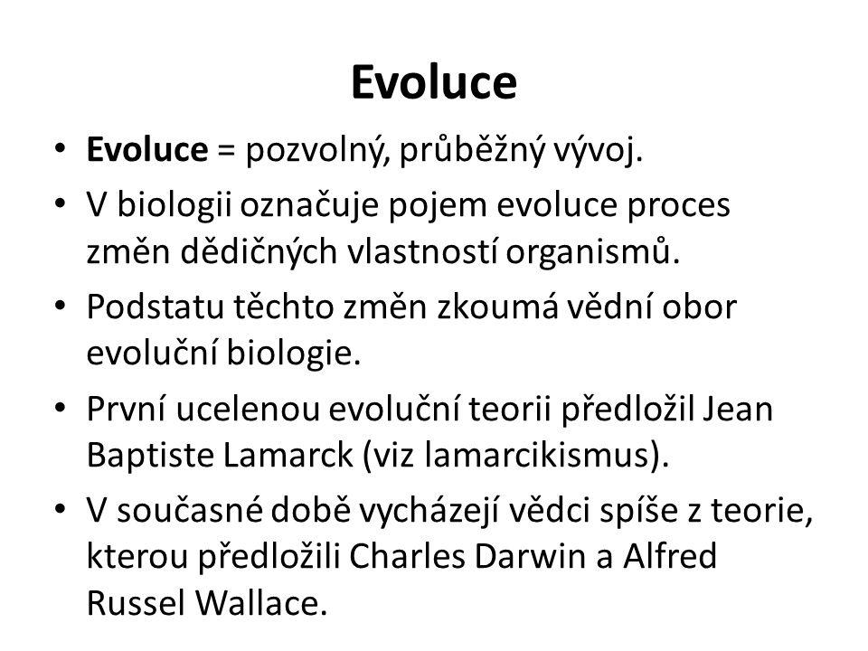 Evoluce Evoluce = pozvolný, průběžný vývoj.