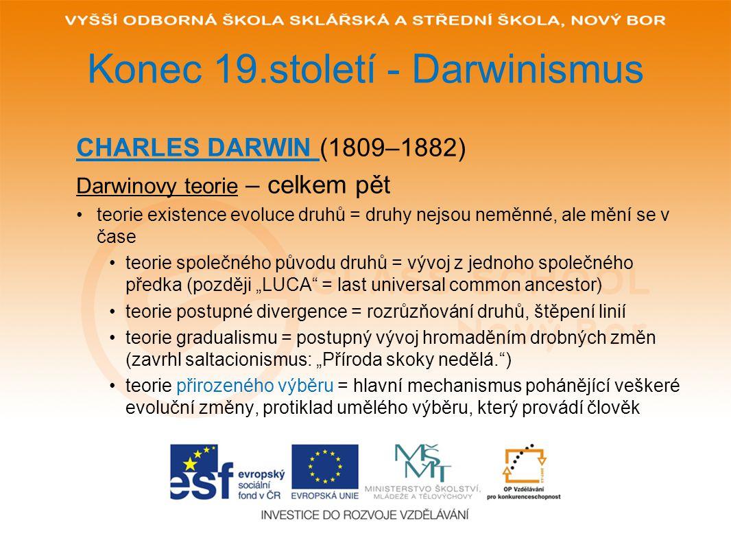 Konec 19.století - Darwinismus