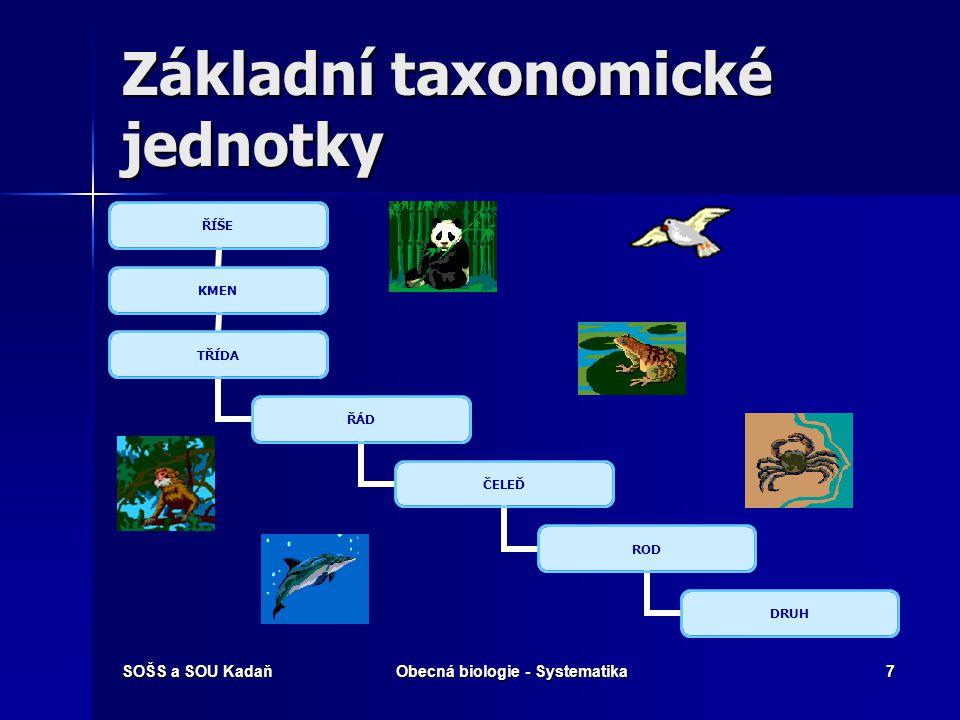 Základní taxonomické jednotky