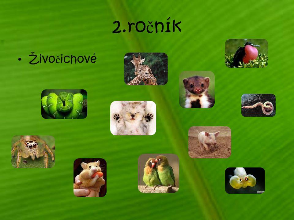 2.ročník Živočichové