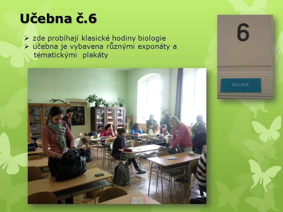 Učebna č.6 zde probíhají klasické hodiny biologie
