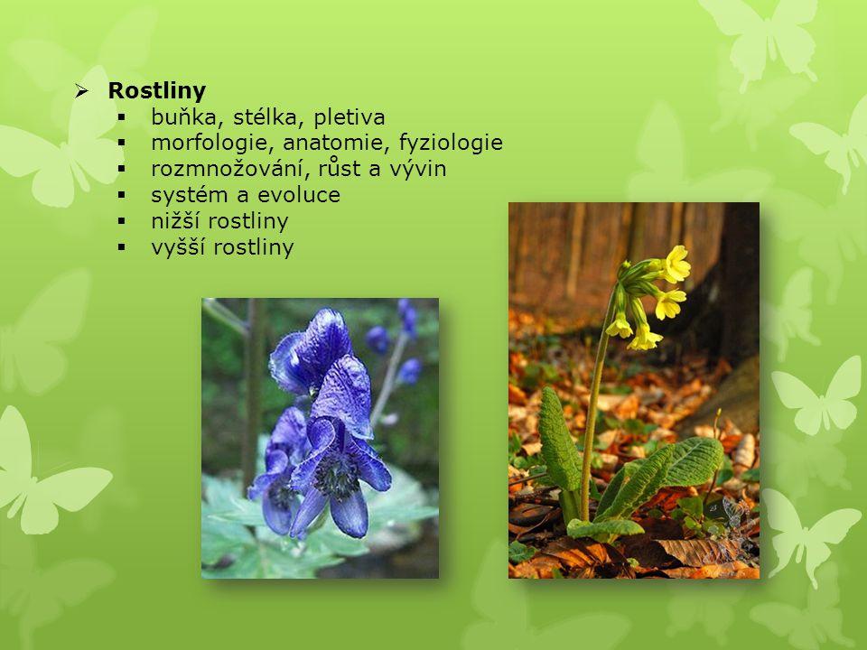 Rostliny buňka, stélka, pletiva. morfologie, anatomie, fyziologie. rozmnožování, růst a vývin. systém a evoluce.