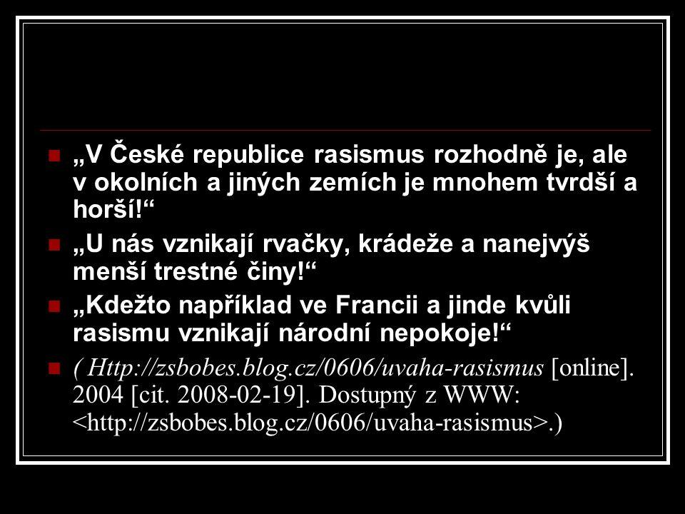 """""""V České republice rasismus rozhodně je, ale v okolních a jiných zemích je mnohem tvrdší a horší!"""