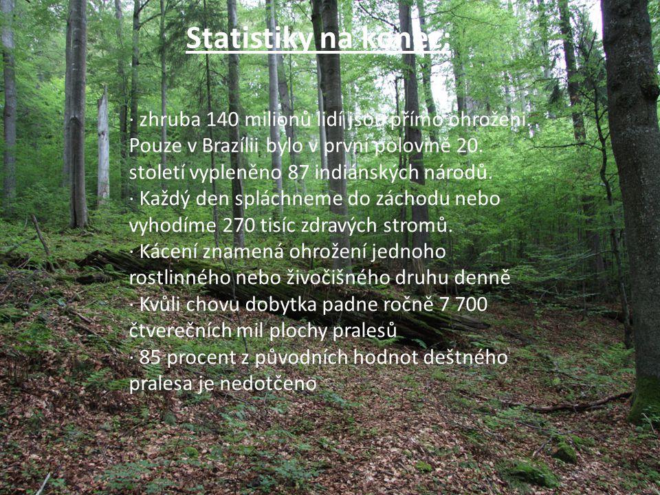Statistiky na konec: