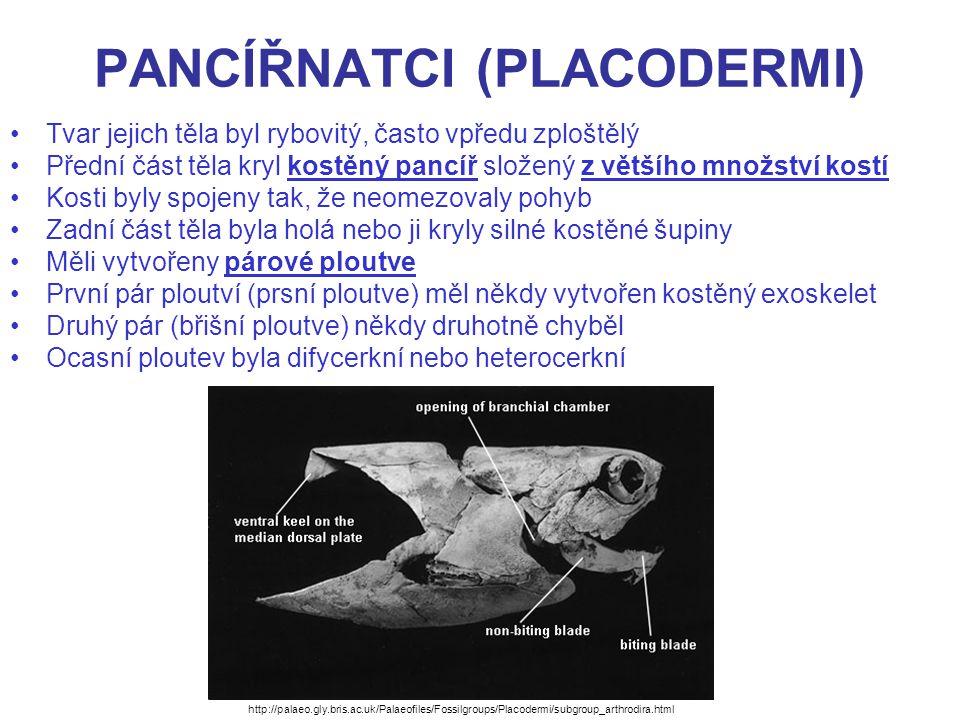 PANCÍŘNATCI (PLACODERMI)