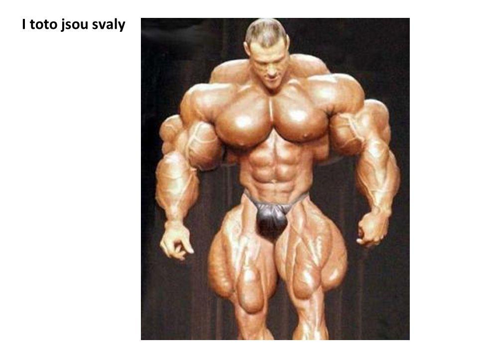 I toto jsou svaly