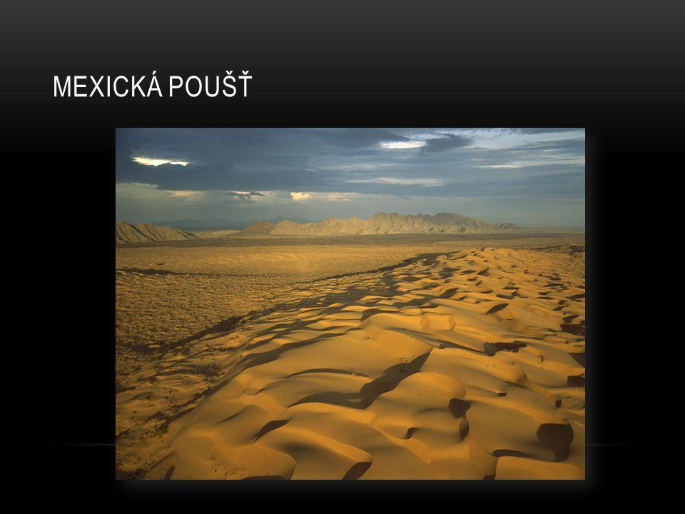 Mexická poušť