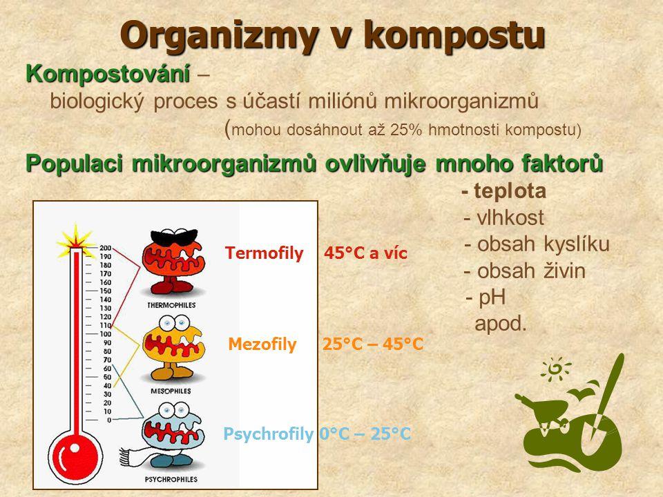 Organizmy v kompostu Termofily 45°C a víc Kompostování –