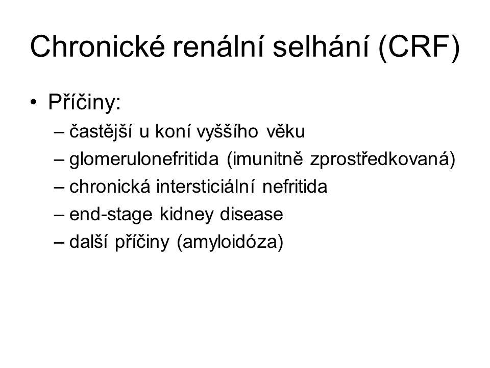 Chronické renální selhání (CRF)