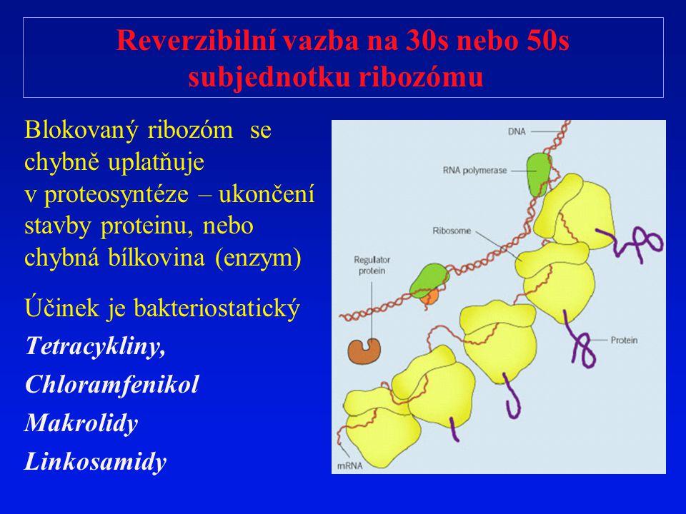 Reverzibilní vazba na 30s nebo 50s subjednotku ribozómu