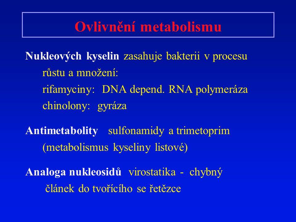 Ovlivnění metabolismu