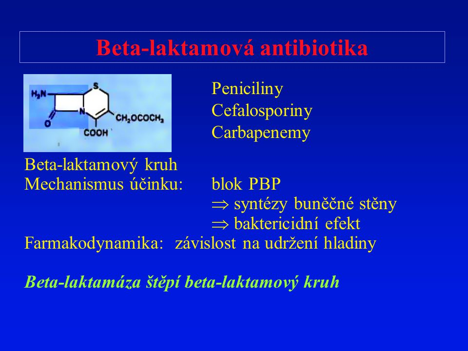 Beta-laktamová antibiotika