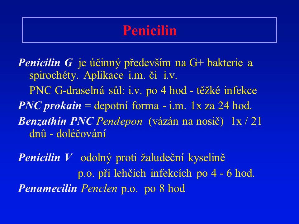Penicilin Penicilin G je účinný především na G+ bakterie a spirochéty. Aplikace i.m. či i.v. PNC G-draselná sůl: i.v. po 4 hod - těžké infekce.