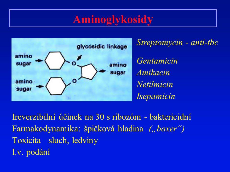 Aminoglykosidy Streptomycin - anti-tbc Gentamicin Amikacin Netilmicin
