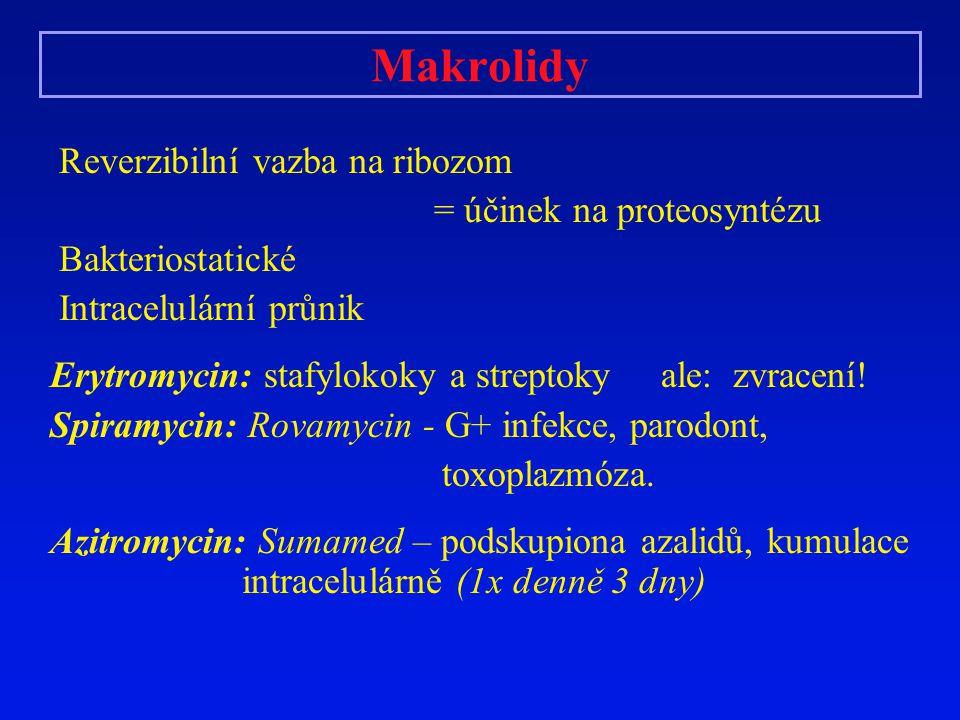 Makrolidy Reverzibilní vazba na ribozom = účinek na proteosyntézu