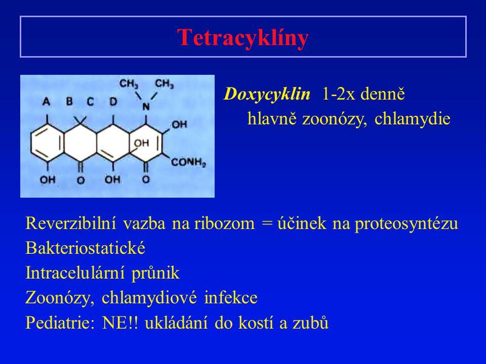 Tetracyklíny Doxycyklin 1-2x denně hlavně zoonózy, chlamydie