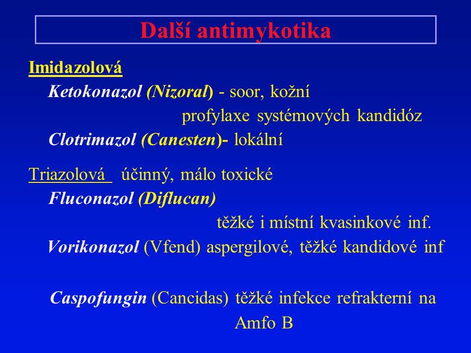 Další antimykotika Caspofungin (Cancidas) těžké infekce refrakterní na