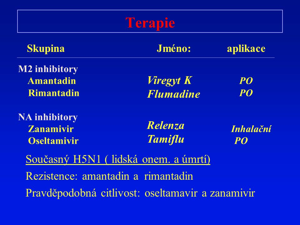 Terapie Viregyt K Flumadine Relenza Tamiflu