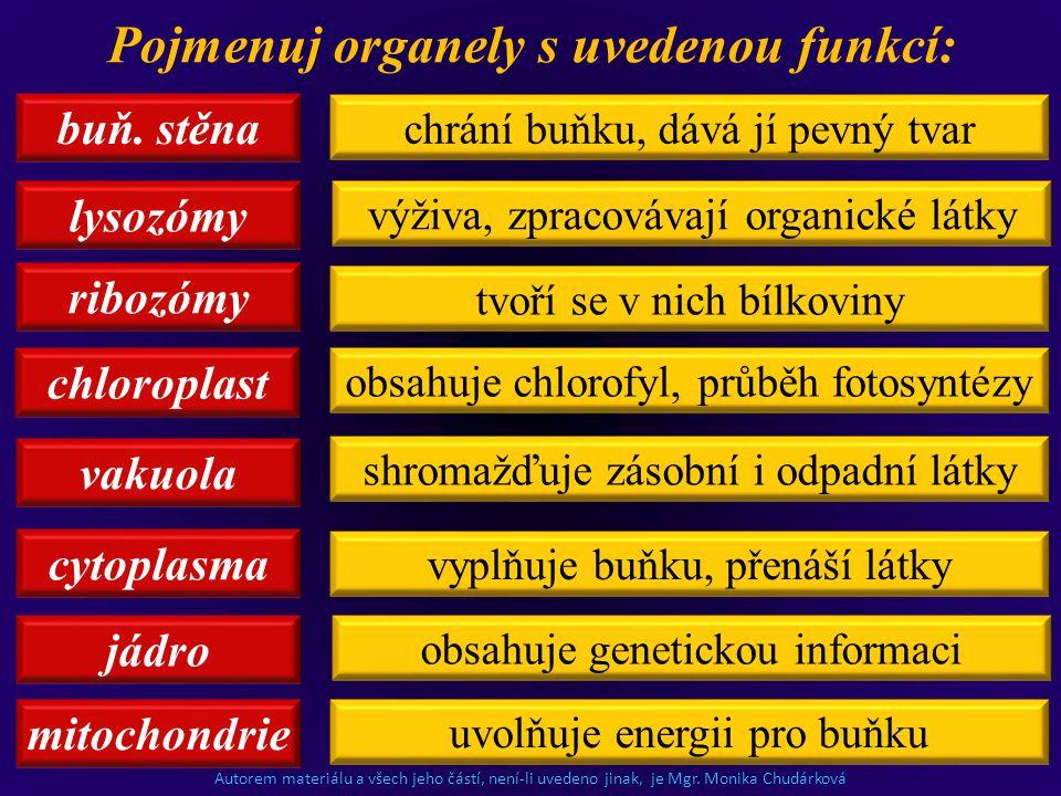 Pojmenuj organely s uvedenou funkcí: