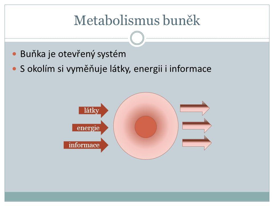 Metabolismus buněk Buňka je otevřený systém