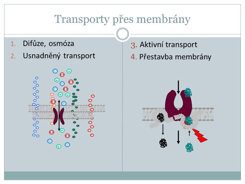 Transporty přes membrány