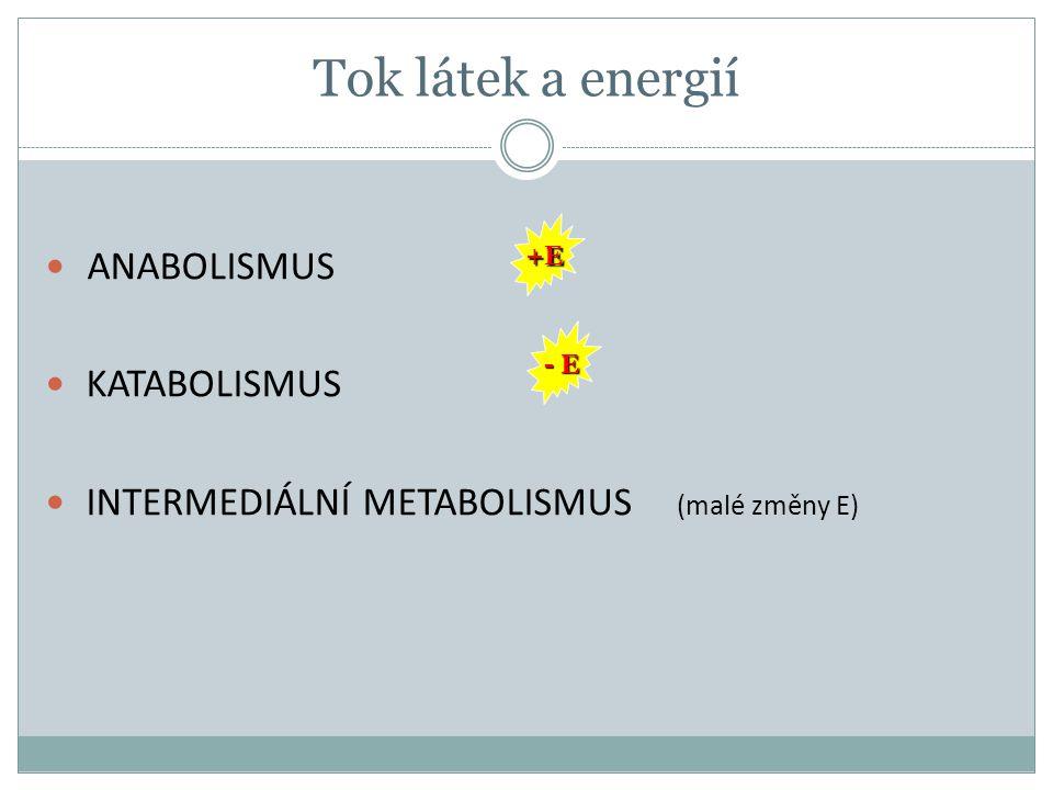 Tok látek a energií ANABOLISMUS KATABOLISMUS