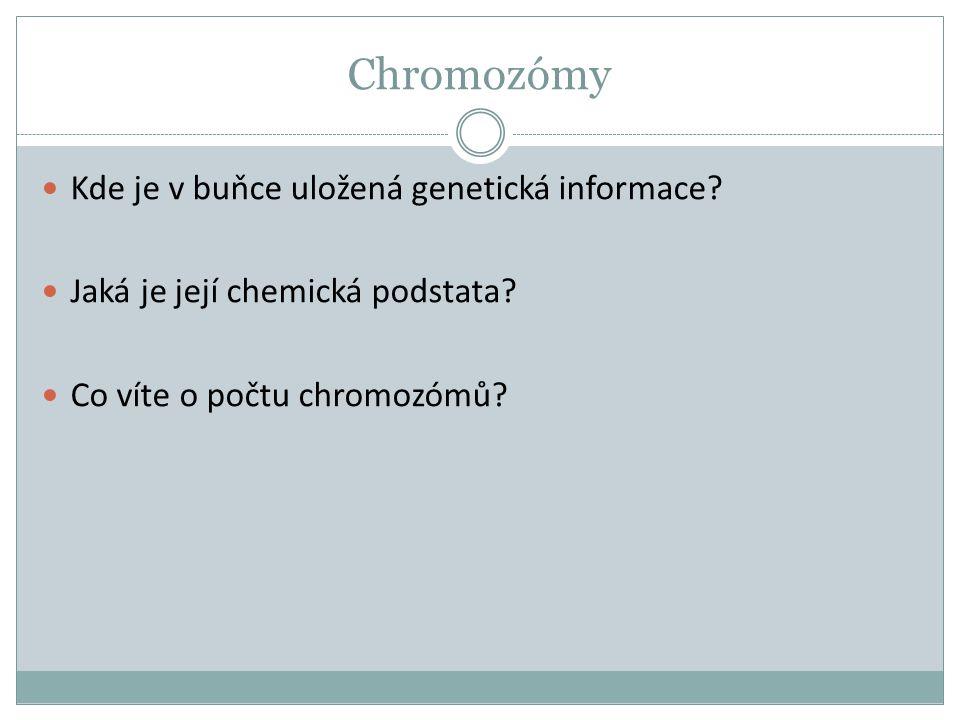 Chromozómy Kde je v buňce uložená genetická informace