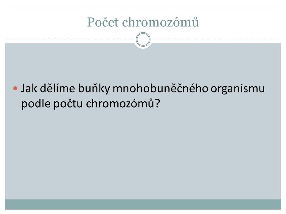 Počet chromozómů Jak dělíme buňky mnohobuněčného organismu podle počtu chromozómů
