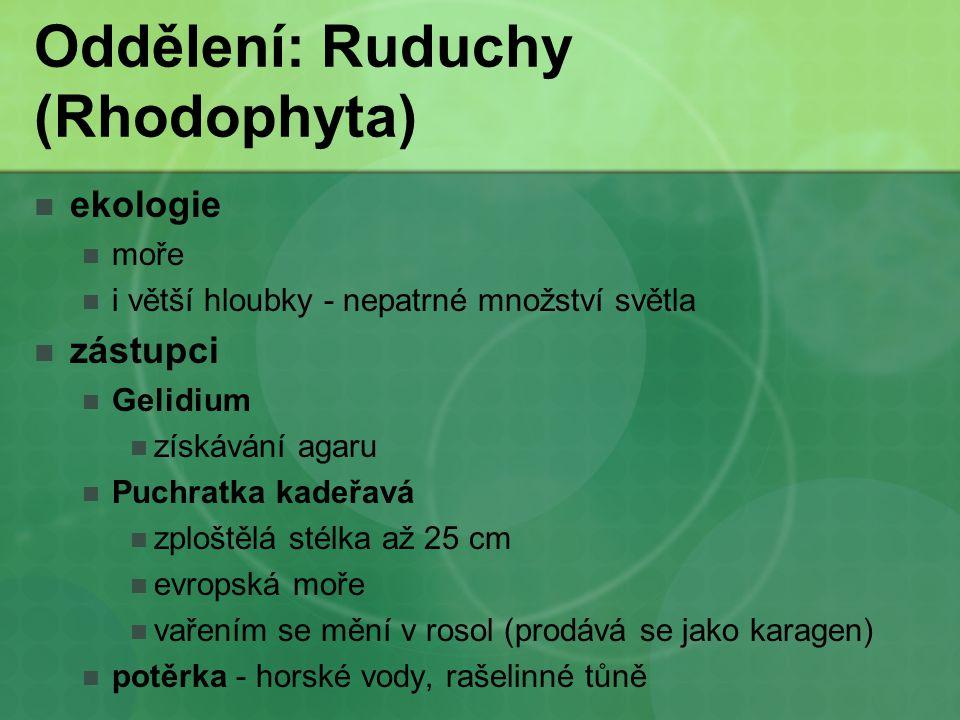 Oddělení: Ruduchy (Rhodophyta)