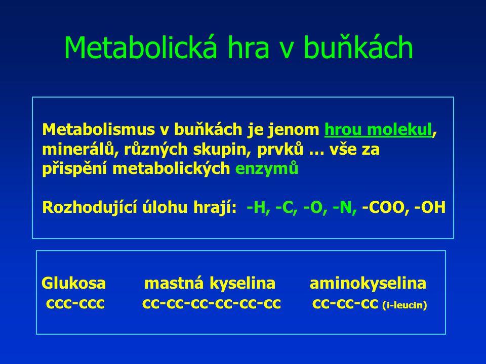Metabolická hra v buňkách