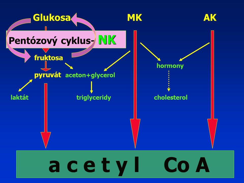 a c e t y l Co A Glukosa MK AK Pentózový cyklus- NK fruktosa