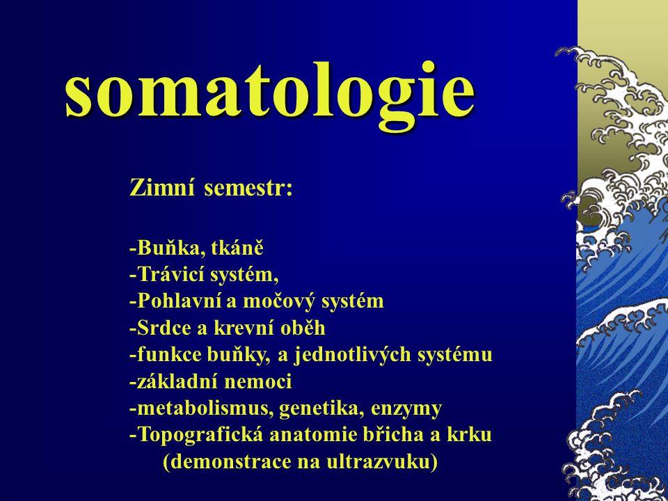 somatologie Zimní semestr: -Buňka, tkáně -Trávicí systém,